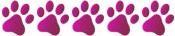 pink-paw-5.jpg