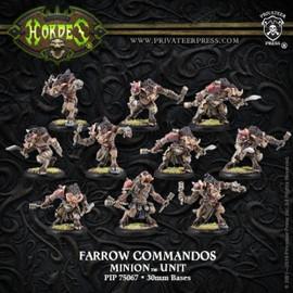 Farrow Brigands/Farrow Commandos