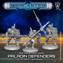 Paladin Defenders – Iron Star Alliance Squad