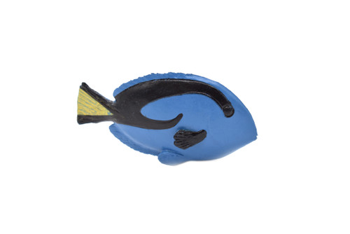 RIGHT SIDE BLUE TANG