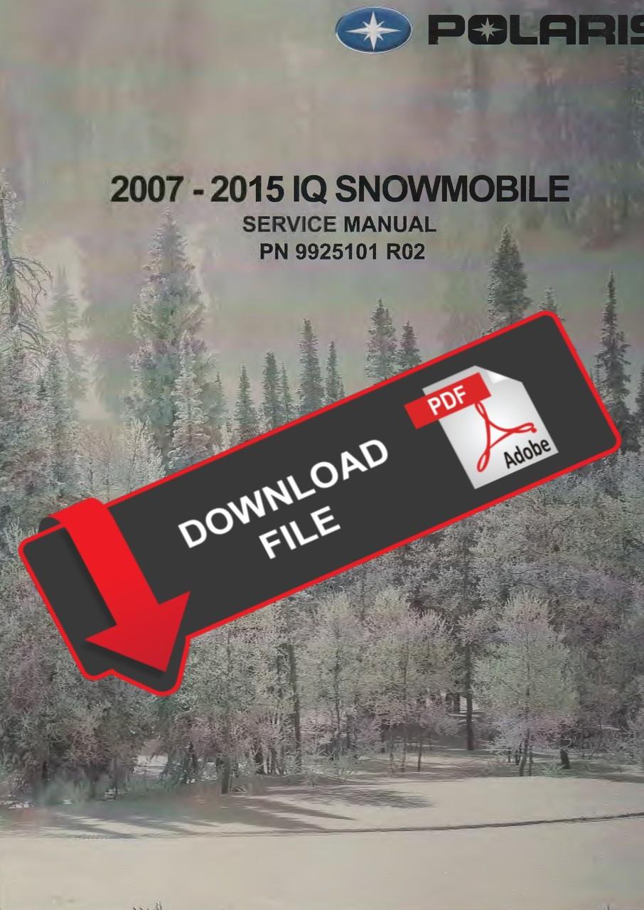 Polaris 2010 800 Dragon Switchback Snowmobiles Service Manual