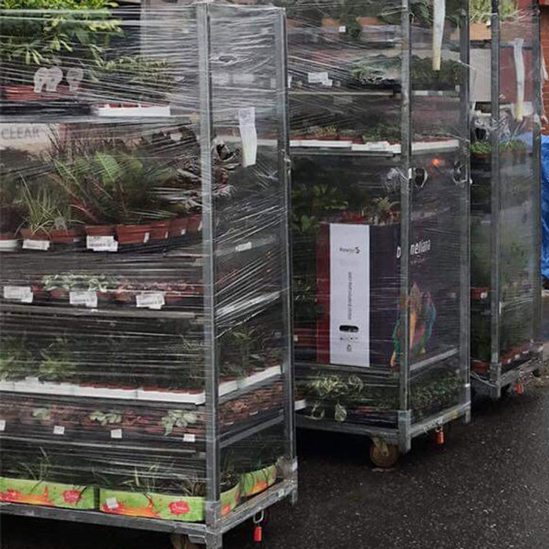 Our latest shipment of live plants has arrived.