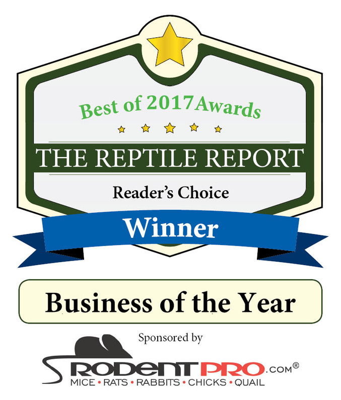 Internet Reptile wins Business of the Year award 2017