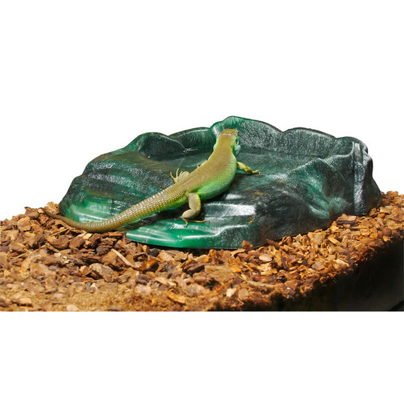 Zoo Med Repti Ramp Bowl, Large, RRB-11