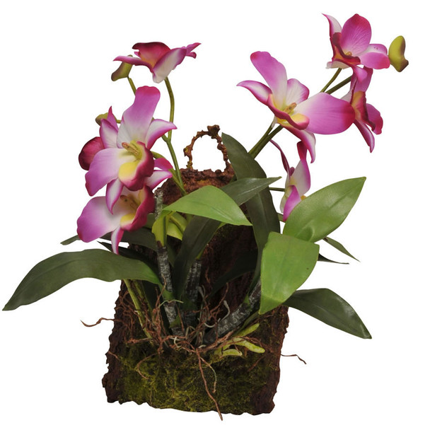 Lucky Reptile Hanging Orchid Purple IF-18