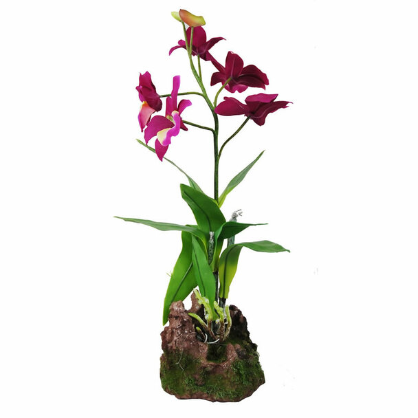 Lucky Reptile Upright Orchid Purple 35cm, IF-14