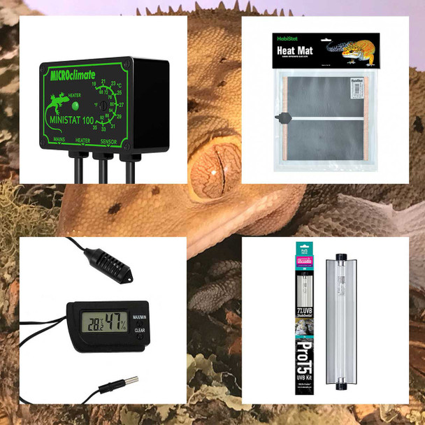 Crested Gecko Electrics Pack