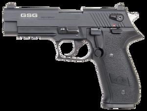"""GSG GERG2210FF FireFly22 LR 4"""" 10+1 Black w/Polymer"""