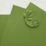 Fern Color Essentials Cardstock