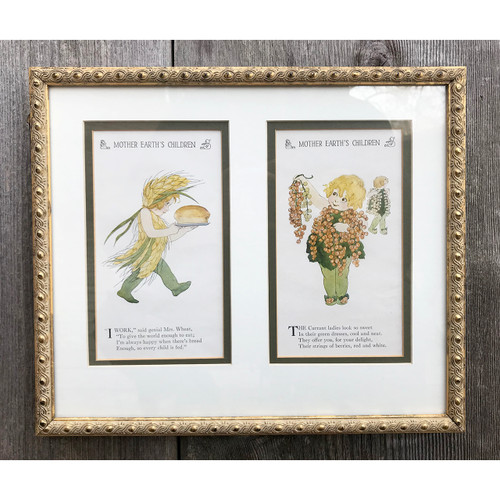 A21008 - Framed Antique Prints