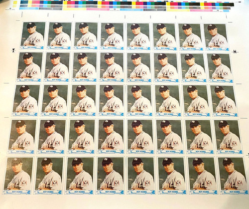 "Roy Hobbs Uncut Sheet from the Movie ""The Natural"""