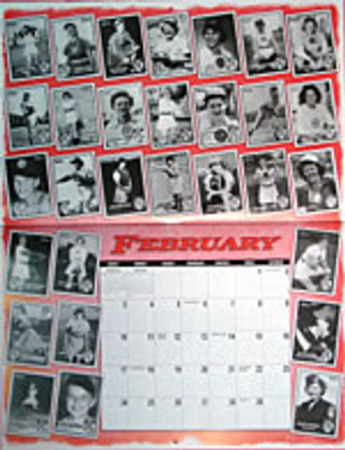 2008 AAGPBL Calendar