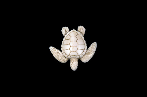 """This is a beautiful hand carved eco-ivory Sea Turtle Statue. The dimensions of the Sea Turtle Statue are 2.09"""" x 0.63"""" x 2.07"""". The SKU is C-27.  This unique Sea Turtle Statue statue will make a great addition to any room in the house. You can place it on any flat surface to display, or a great gift for children to have.  All statues are hand carved in clay. We then make a mold of the original piece before producing them into the final acrylic resin product with an antique finish."""