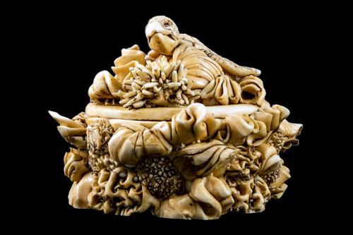 Hand Carved Eco Ivory Turtle Round Box | F&F Inc.