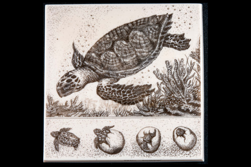 "This is a gorgeous wall plaque was originally hand etched Life of a Turtle Wall Plaque design.  This is part of the incredible line of Mossup Valley Designs that we carry, with the wonderful artist Rachel Badeau.  The dimensions of the plaque are 6.09"" x 6.12"" x 0.39"".  The SKU is MVD WP 3.  Rachel Badeau has been etching and engraving in a variety of media for over thirty years.  Her work, characterized by fine line and intricate detail, attempts to touch the hearts and emotions of others.  All while reflecting her love of animals, nature and the human spirit.    The resin scrimshaw piece is originally hand etched by Rachel Badeau.  We make a mold of the original piece and do an open cast pour of our resin mixture.  The pieces are removed from the mold and sanded and inked."