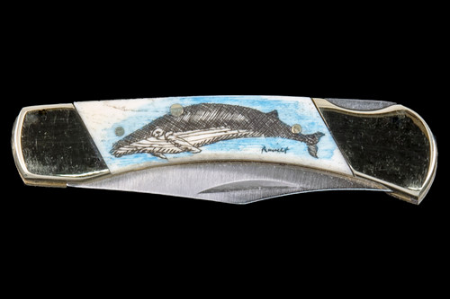 "This unique hand etched Colored Humpback Whale design on a 440 Stainless Steel Blade LB 3 Knife.  This beautiful knife is part of the Scrimshaw Collection, with those words laser engraved into the blade.  The LB 3 knifes come with the pictured leather sheath and each scale is made with Bovine Bone.  The LB 3 Knife has bolsters and shackle that are nickel silver with brass pins and liner.  It is a lock blade knife and a very useful pocket knife. The dimensions of the LB 3 Pocket Knife with the blade closed are 2.97"" x 0.76"" x 0.31"".  The blade itself is approximately 2.21"" making the width of the knife with an open blade 5.18"".  The SKU is LB-3 100.  The scrimshaw is inked with colored india ink and sealed with renaissance wax, which is used by museums for antique restoration.  It also helps bring out the beauty of the artwork as well as in the cow bone. The knife is water resistant, but not waterproof."