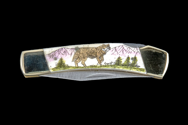 """This unique hand etched Colored Wolf design on a 440 Stainless Steel Blade LB 5 Knife. This beautiful knife is part of the Scrimshaw Collection, with those words laser engraved into the blade. The LB 5 knifes come with the pictured leather sheath and each scale is made with Bovine Bone. The LB 5 Knife has bolsters and shackle that are nickel silver with brass pins and liner. It is a lock blade knife and a very useful pocket knife. The knife also has a key chain ring at the end of the knife. The dimensions of the LB 5 Pocket Knife with the blade closed are 3.71"""" x 0.90"""" x 0.39"""". The blade itself is approximately 2.80"""" making the width of the knife with an open blade 6.51"""". The SKU is LB-5 106.  The scrimshaw is inked with colored india ink and sealed with renaissance wax, which is used by museums for antique restoration. It also helps bring out the beauty of the artwork as well as in the cow bone. The knife is water resistant, but not waterproof."""