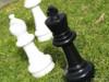 Giant Chess 30cm Garden Chess Set (GC321) pieces