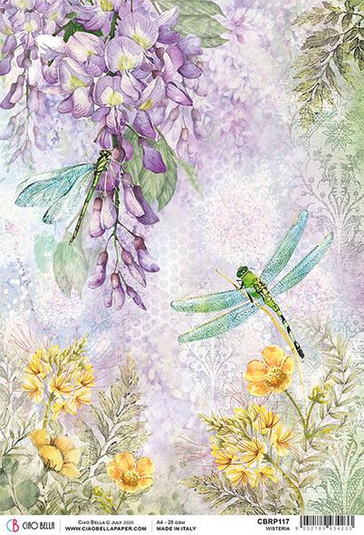 Wisteria & Dragonfly