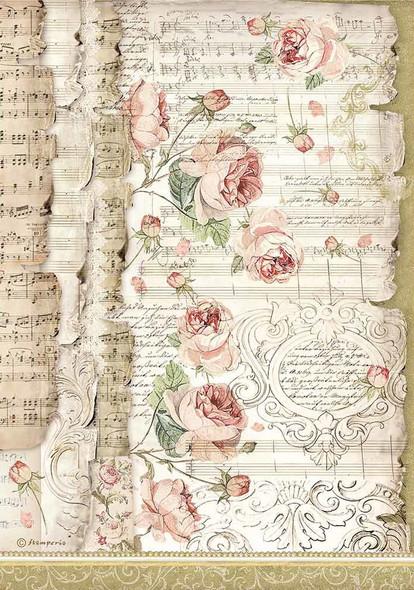 Roses & Music