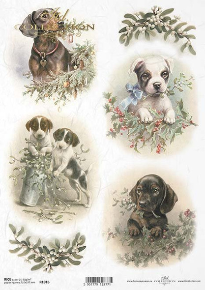 Puppies at Christmastime
