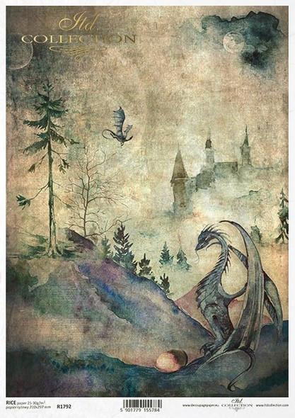 Dragons & Castle