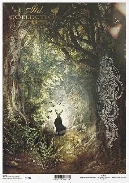 Druid World