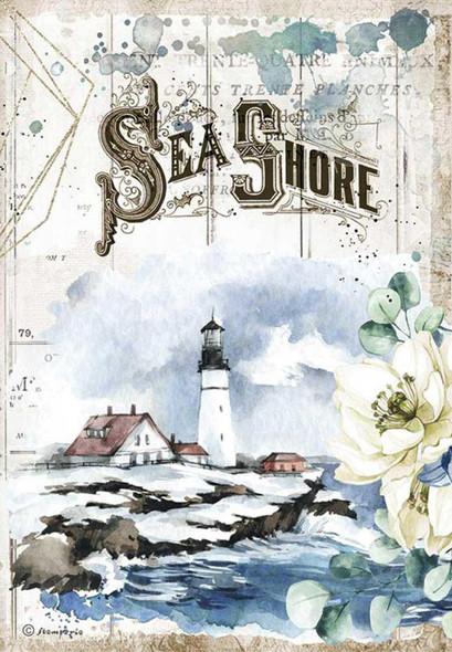 Romantic Sea Dream Sea Shore