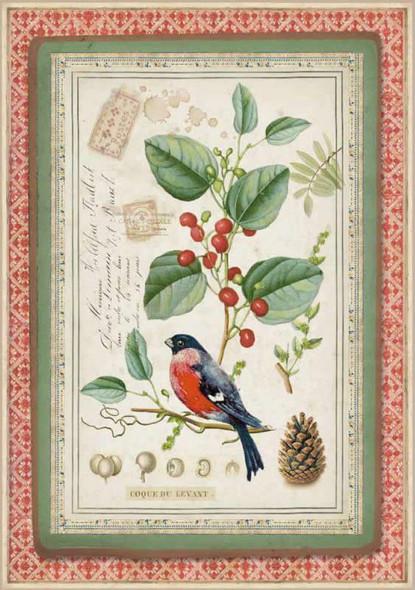 Winter Botanic Little Bird on Holly