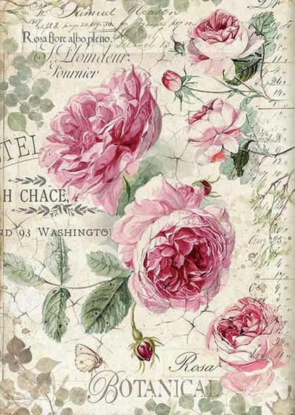 Botanic English Roses