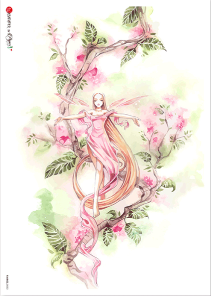 Fairy 0052