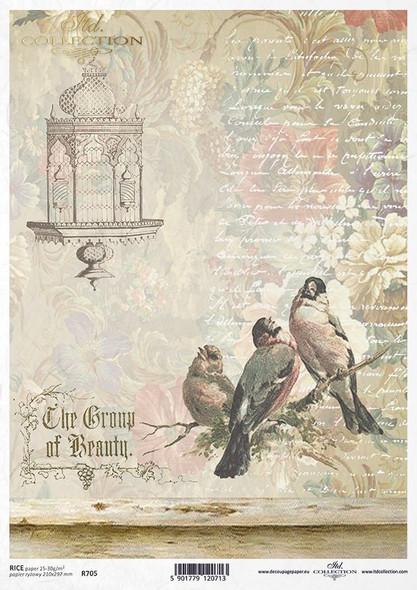 Bird & Birdcage B