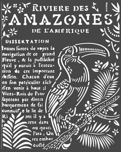 Amazonia Toucan