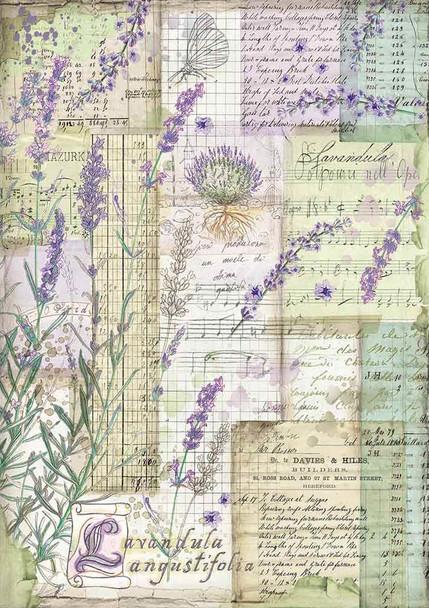 Lavender Fantasy