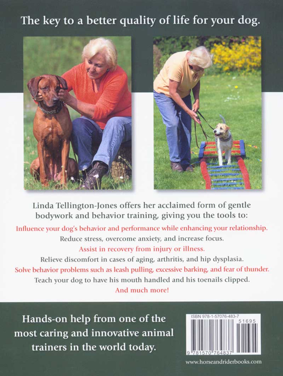 Residential dog training should you send your lab away to be trained.