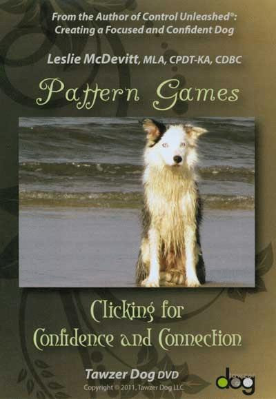 pattern games clicking for confidence and connection dvd dogwise