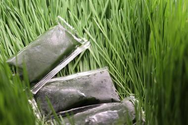 Grass Shots greener than that grass, Wow!!