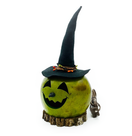 """Our Aum holiday tradition...Handmade in Carlisle, Pennsylvania. """"Ms. Fiona Witch"""" is an actual dried and preserved gourd. Includes low watt orange light and cord. Gourds are flammable. DO NOT PUT NEAR an open flame."""