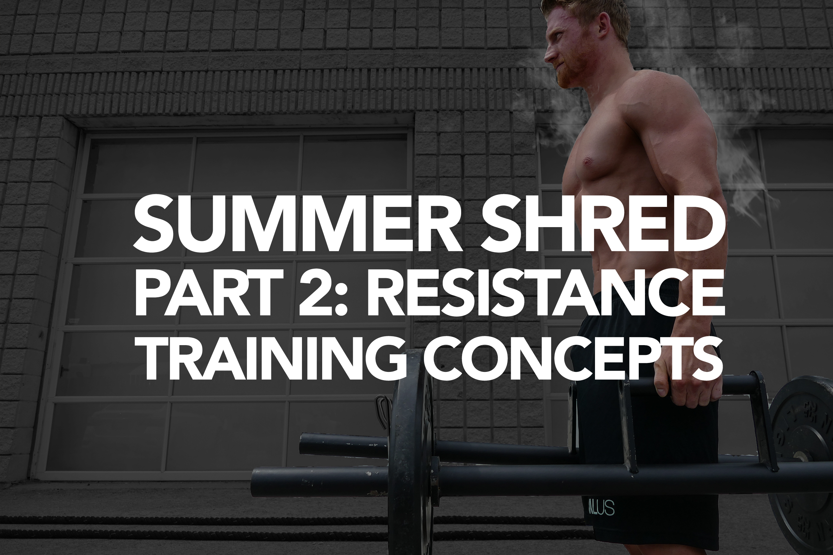 Summer Shredding Part 2: Resistance Training Concepts