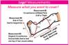 CastCoverz! Sleeperz! for Legs - Pinked Zebra