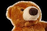 Cubby Bear