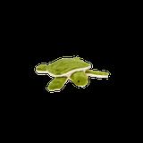 Esmeralda Turtle