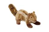 Peanut Chipmunk