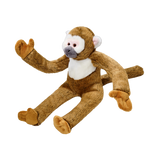 Albert Monkey