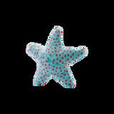 Ally Starfish
