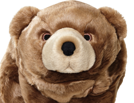 2018-0105-fluff-tuff-bearportrait.png