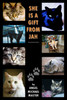 She Is a Gift from Jah: Essays of a Pet Owner