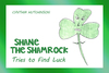 Shane the Shamrock - eBook