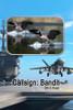 Callsign: Bandit (HB)
