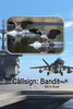 Callsign: Bandit - eBook